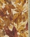 1701 - Foliage II.