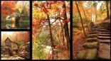1761 - Fallscapes