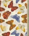 V1729 - Forever Butterflies