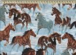 V1221 - Koně na sněhu II.